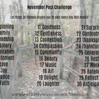 November Post Challenge
